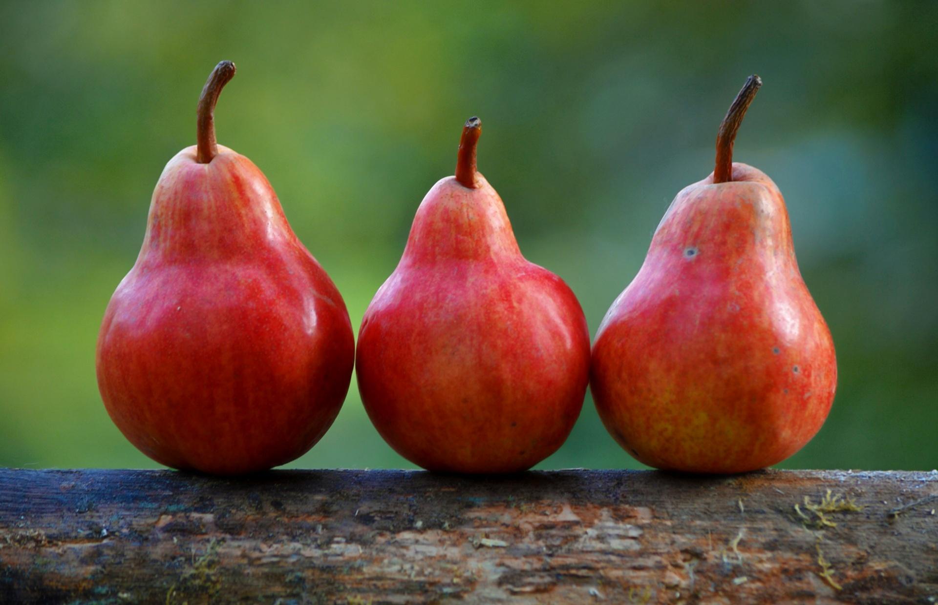 three-pears.jpg