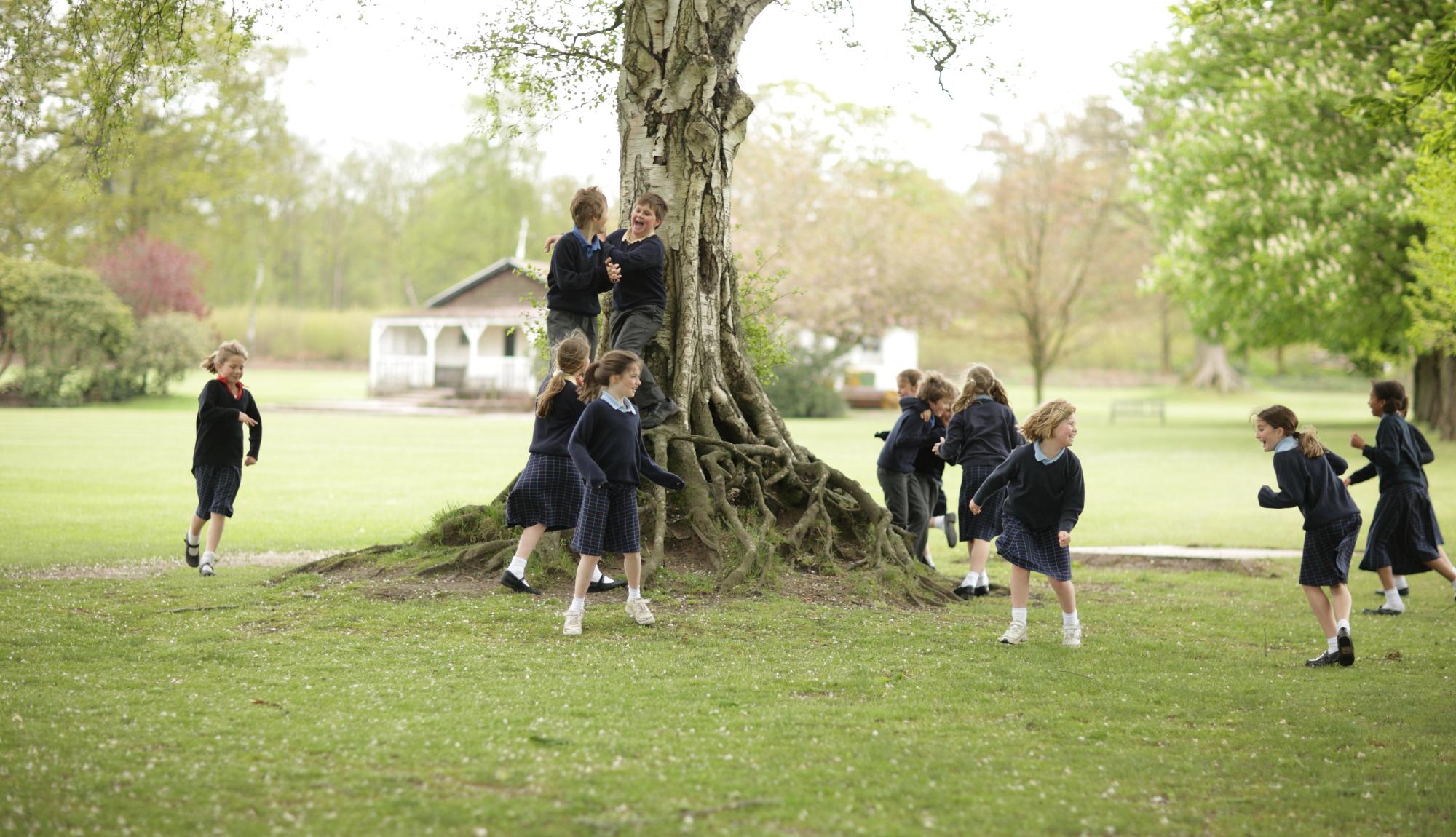 highfield_school_-_grounds_4.jpg