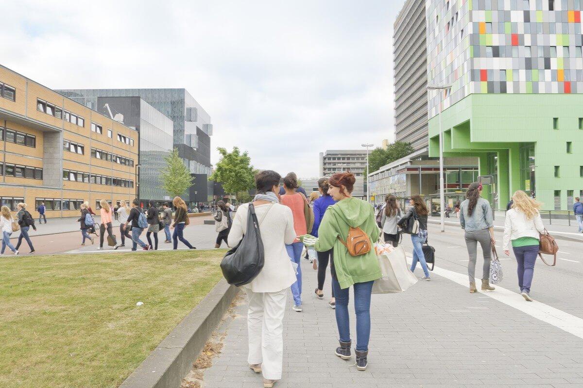 international student enrollments