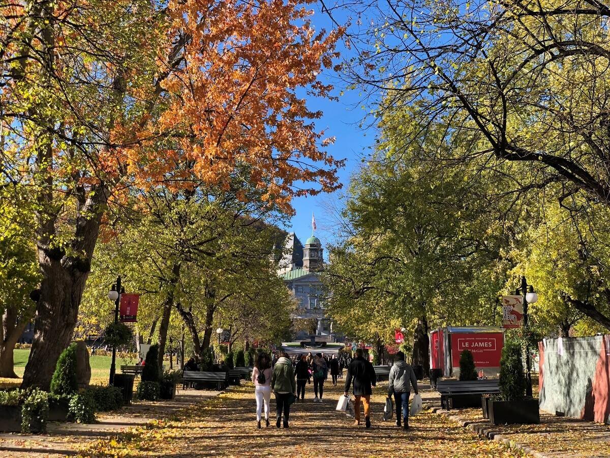 Canadian universities going online