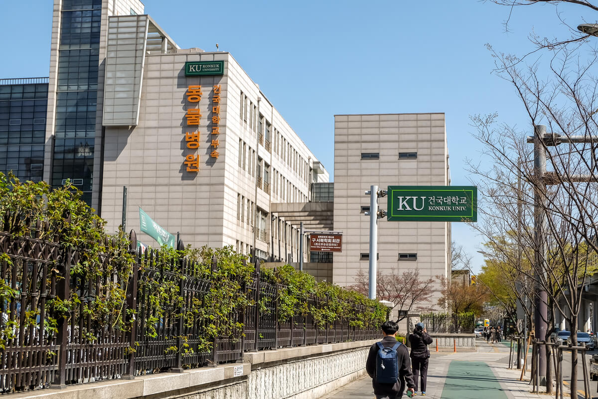 South Korean universities