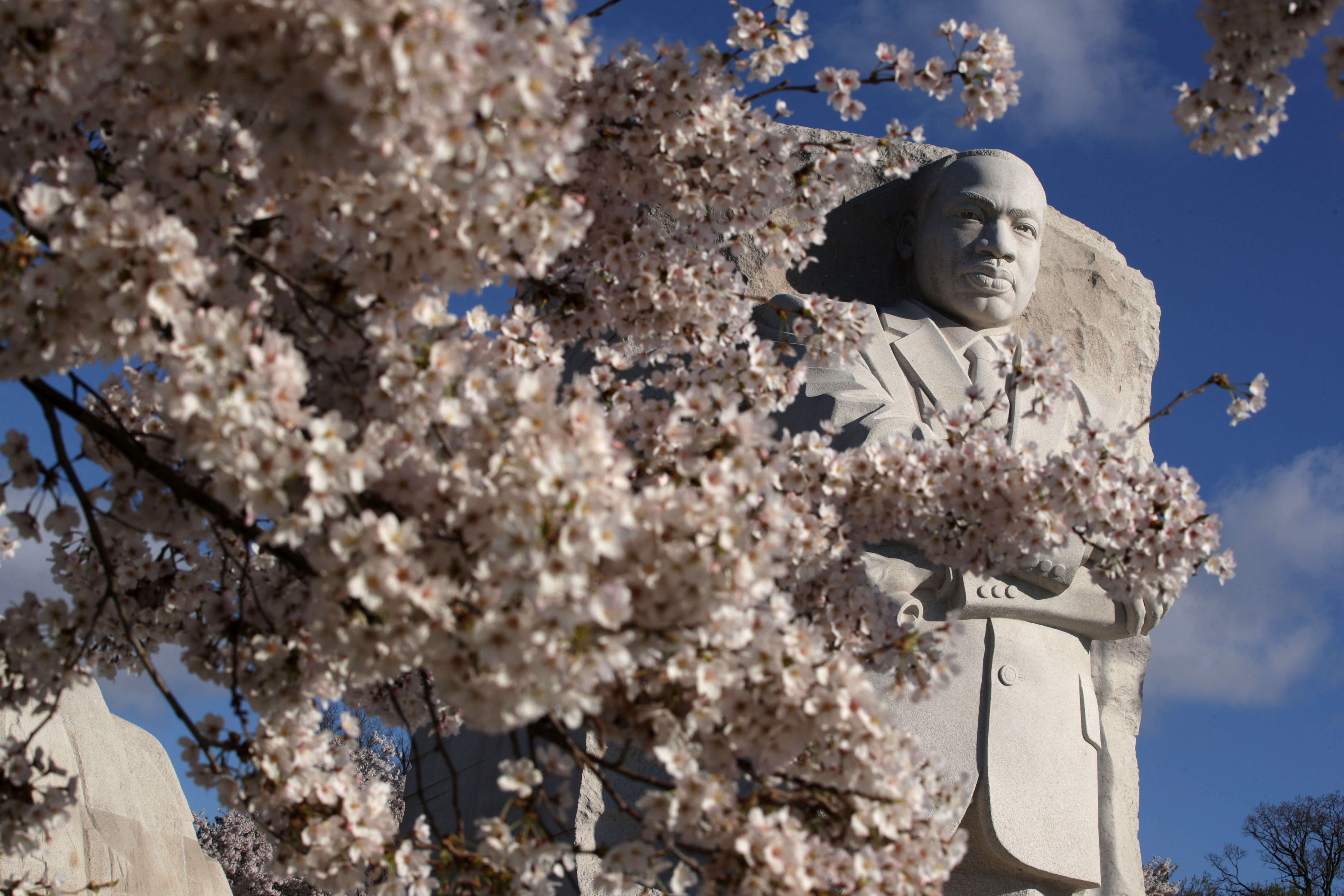 Martin Luther King Day explained for international students