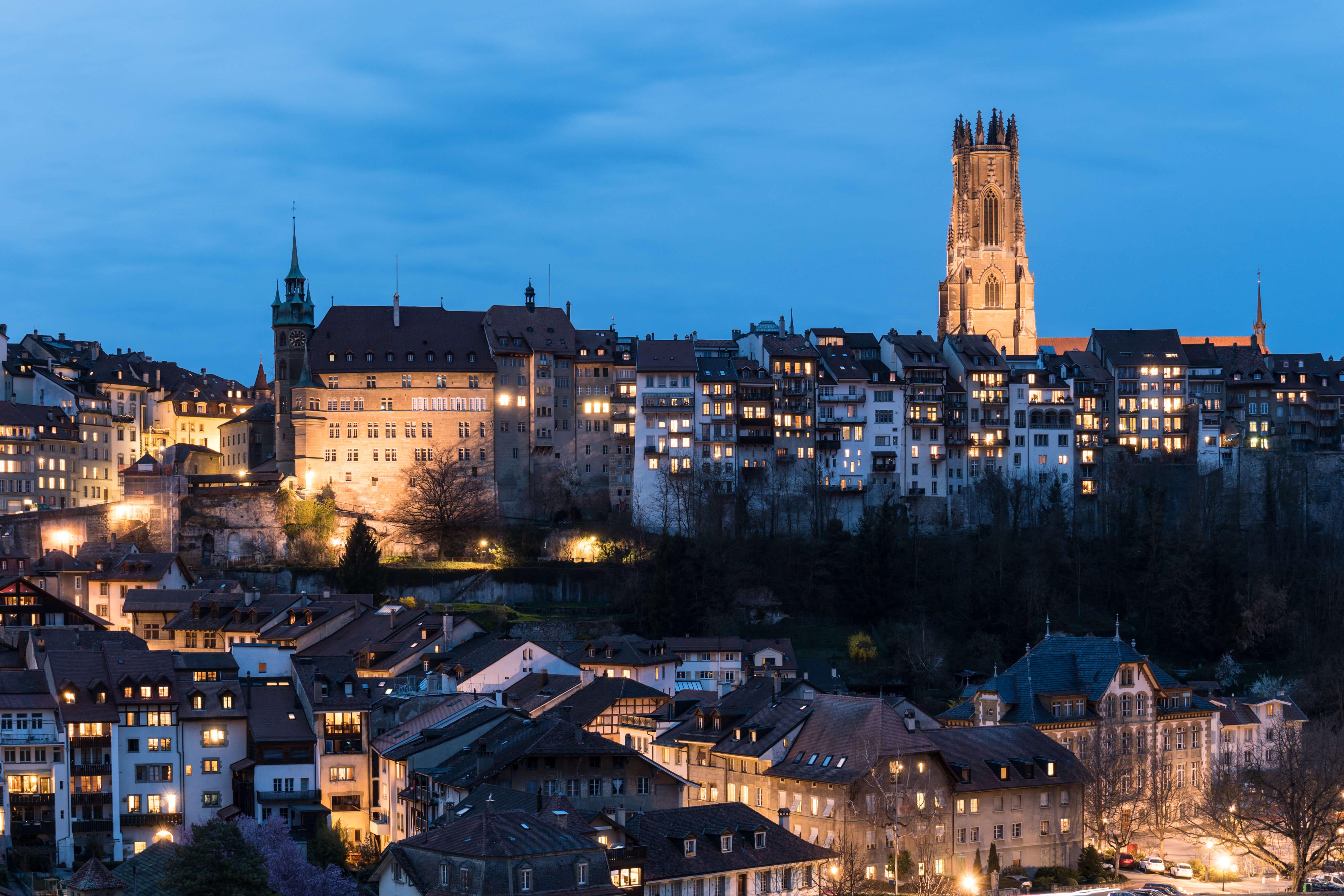 Fribourg LLM