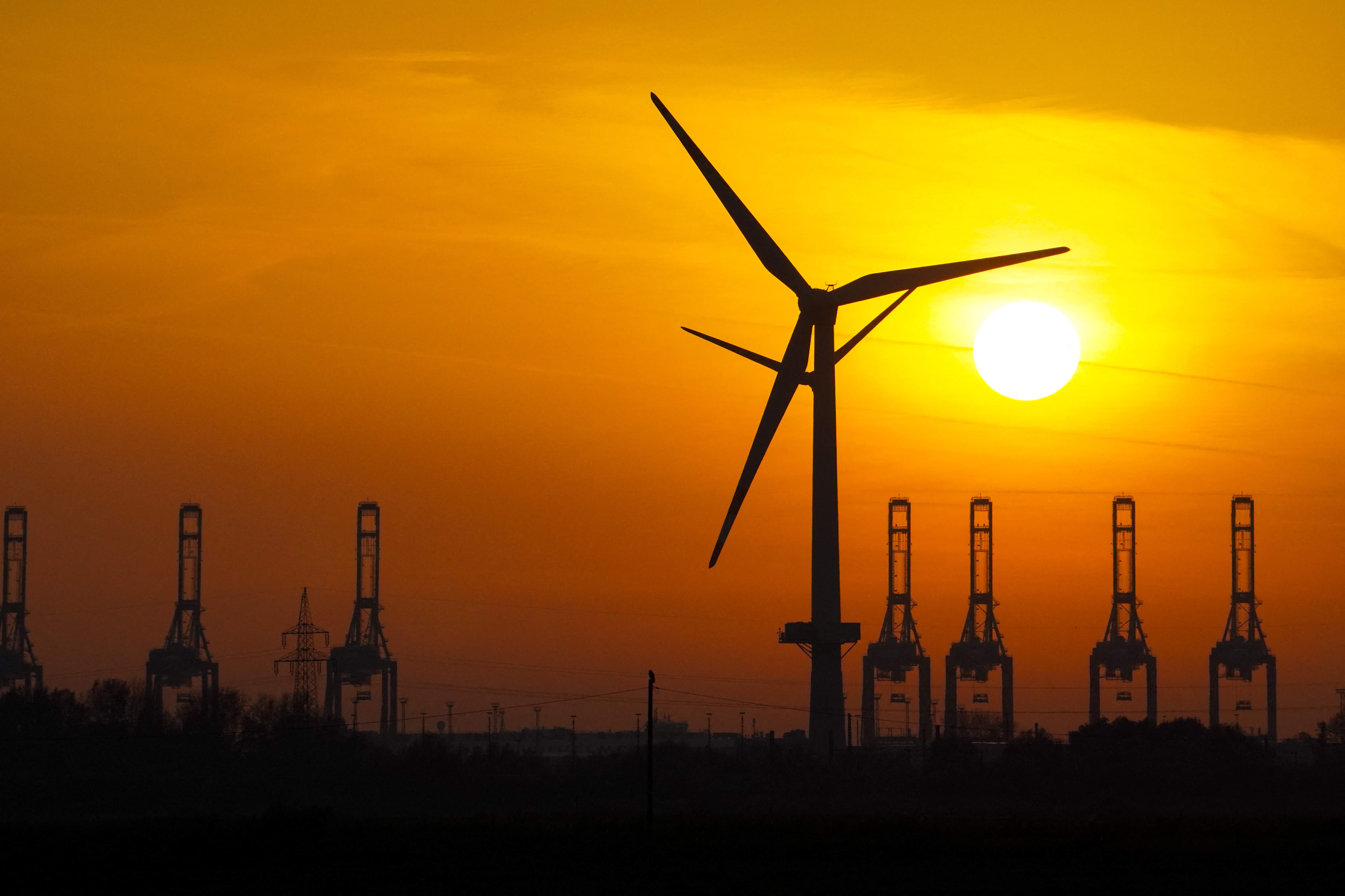 Go green: The best countries to get your sustainable energy degree