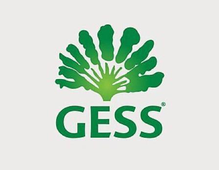 GESS – International School
