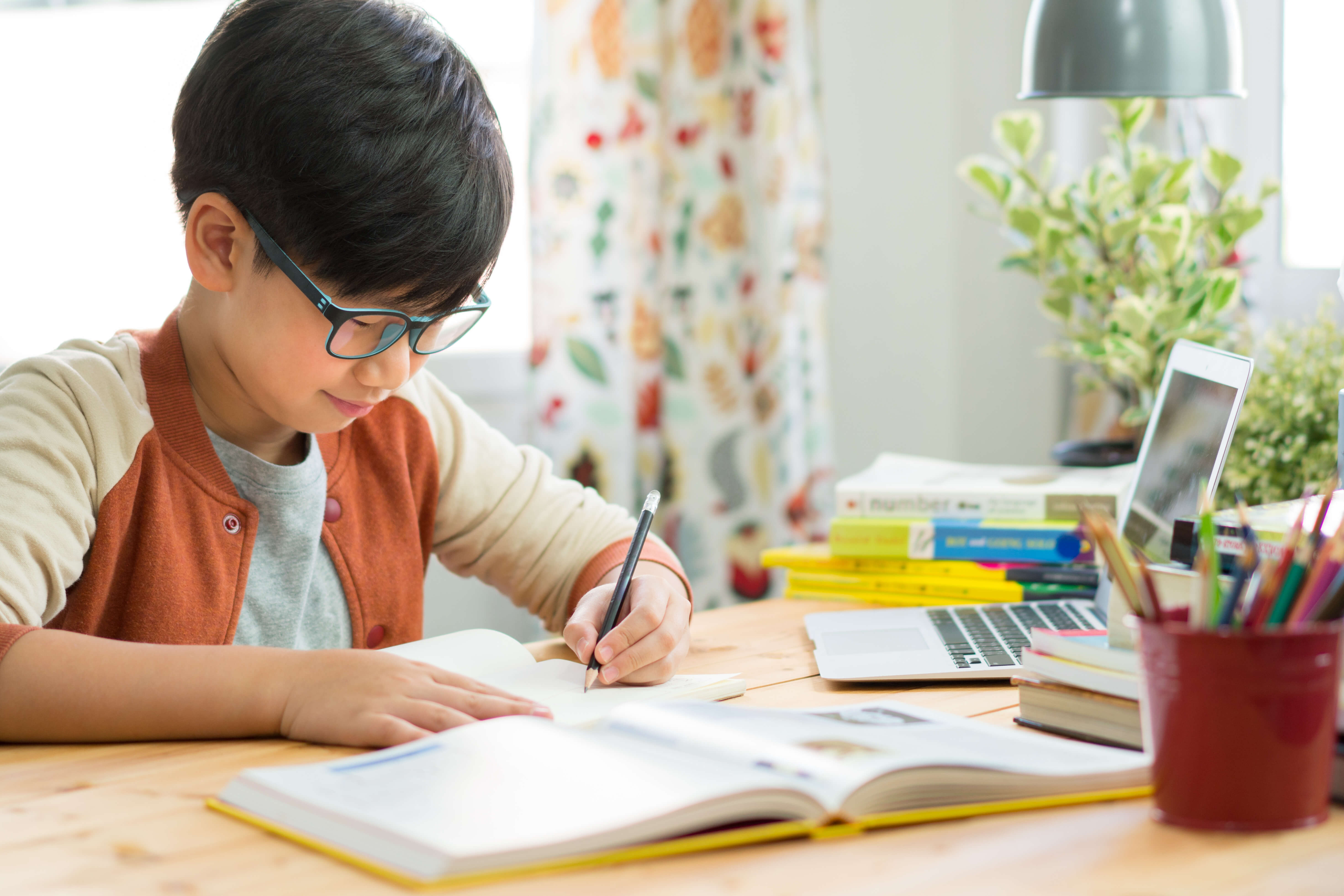 How to get an American education without leaving home