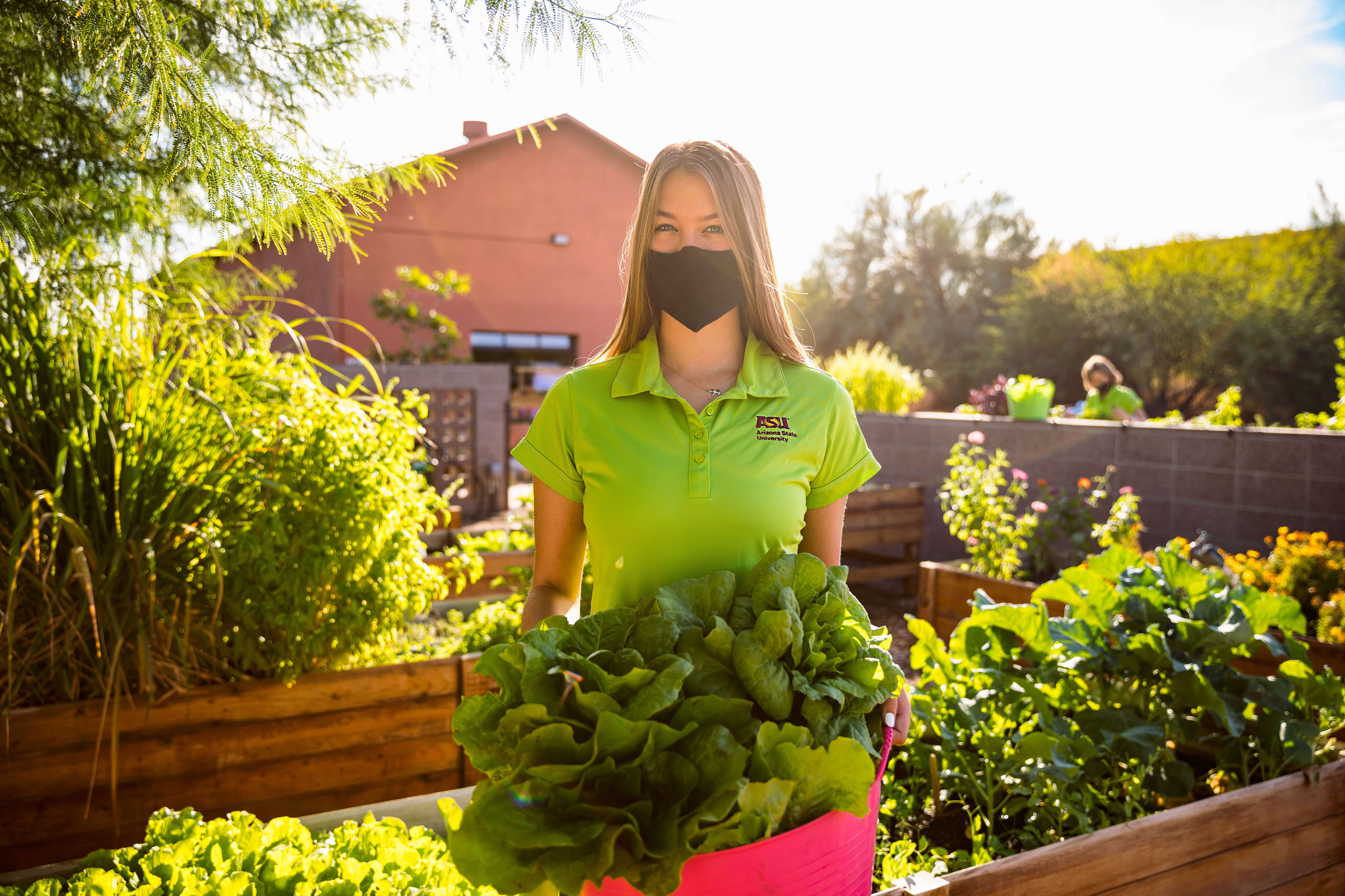 Arizona State University: Learn to feed the world from anywhere in the world